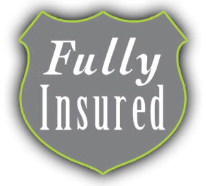 icon showing WellExpert is fully insured
